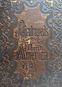 Leather-tooled cover of original volume of Quadrupeds of North America by John J Audubon